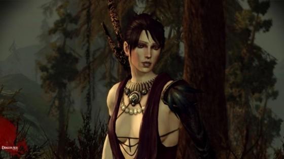 Dragon Age Origins 333