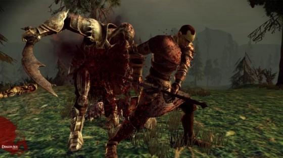 Dragon Age Origins 335