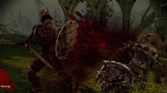 Dragon Age Origins 341