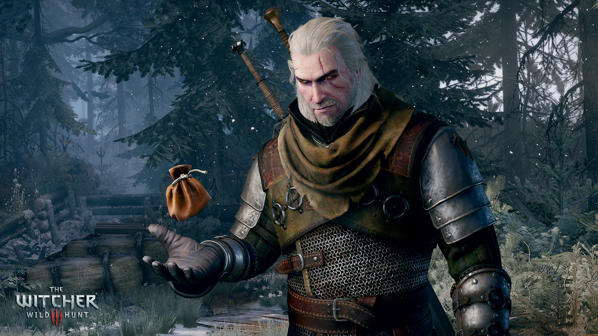 1422266682-the-witcher-3-wild-hunt-getting-paid-best-part-of-the-job